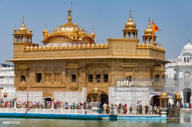 the golden temple, amritsar, india - punjab india stock pictures, royalty-free photos & images