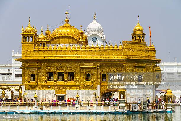 the golden temple - amritsar, punjab, india. - golden temple india stock photos and pictures