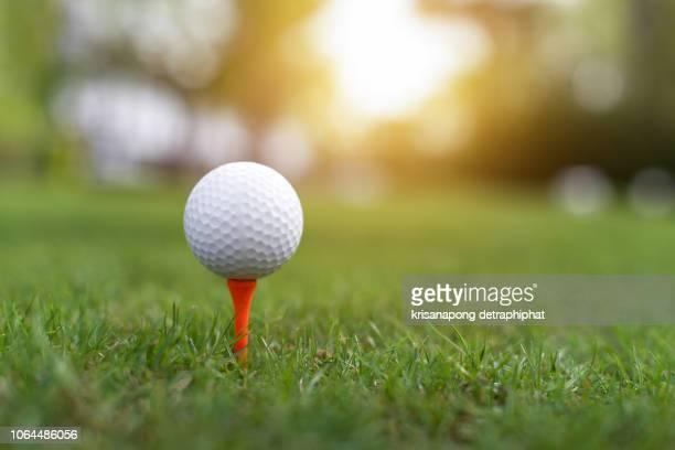 the golf ball is on the green,golf,golf ball on grass, - ゴルフボール ストックフォトと画像