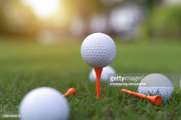 the golf ball is on the green,golf,golf ball on grass, - golftee stock-fotos und bilder