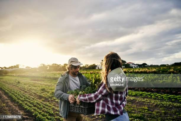 la bondad de orgánicos - pase fotografías e imágenes de stock