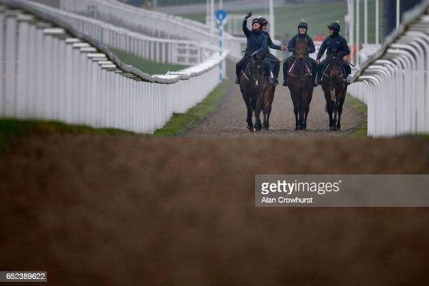 The Gordon Elliott string pose for a selfie as they make their way to the gallops to exercise prior to the upcoming Cheltenham festival starting on...
