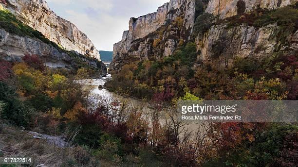 The Gorge of Lumbier in autumn,  Irati River, Navarra, Spain
