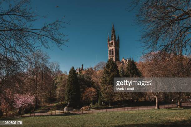 the gothic tower of glasgow university rising over the treetops of kelvingrove park - strathclyde stock pictures, royalty-free photos & images