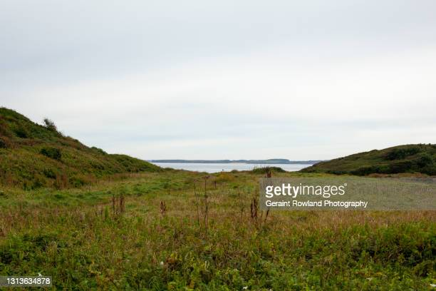 the gower, wales - geraint rowland stock pictures, royalty-free photos & images