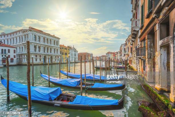 the grand canal in venice, italy - canal stock pictures, royalty-free photos & images