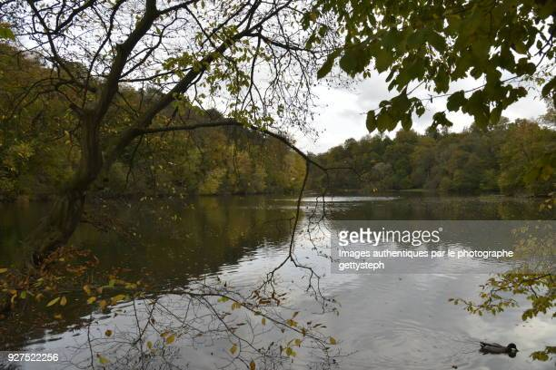 The 'Grand Etang des Clabots' in autumn