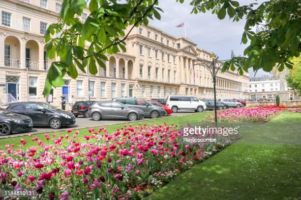 市役所の壮大なファサード私は、nfront、グロスターシャー、イングランド、英国のコッツウォルド・スパの町の遊歩道に沿って、春のチューリップの美しいディスプレイを持っています - チェルトナム ストックフォトと画像