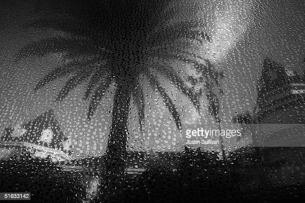 The Grand Floridian Hotel at Disney World is seen through a wet bus window October 19 2004 in Orlando Florida