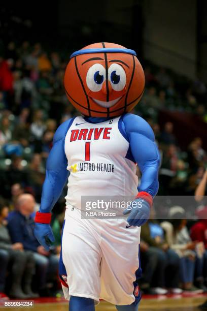 The Grand Rapid Drive's mascot looks on during the game against the Erie Bayhawks on November 3 2017 at DeltaPlex Arena in Grand Rapids MI NOTE TO...