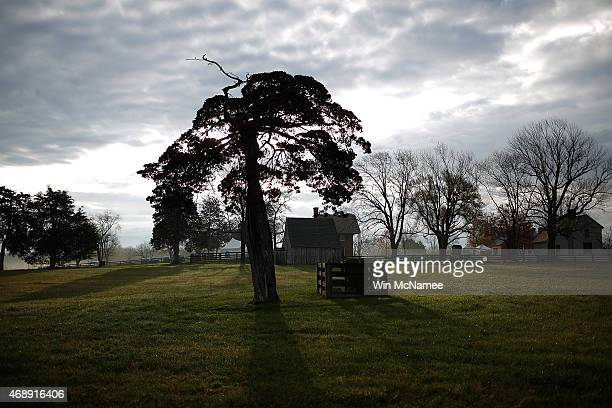 The grave of Appomattox Virginia native and Confederate soldier Lafayette Meeks rests under a tree at sunrise at the Appomattox Court House National...