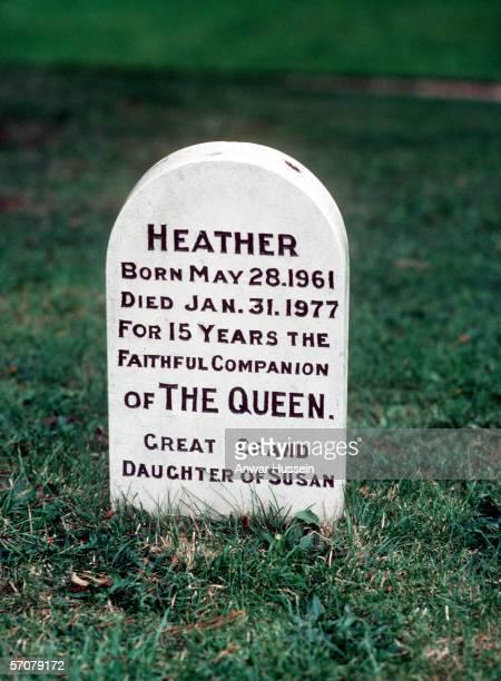 The grave of Queen Elizabeth II's dog Heather at Sandringham
