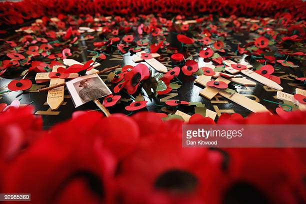 The Grave of the Unknown Warrior is filled with poppies after the Armistice Day service at Westminster Abbey on November 11 2009 in London England...
