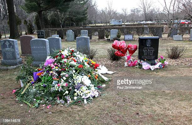 The grave site of singer Whitney Houston and her father John Russell Houston Jnr located in the East Ridge section of the Fairview Cemetery on...