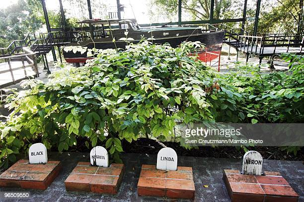 The graves of Hemingway�s dogs Black Negrita Linda and Neron against the backdrop of Hemingway�s boat Pilar next to Ernest Hemingway�s house at the...