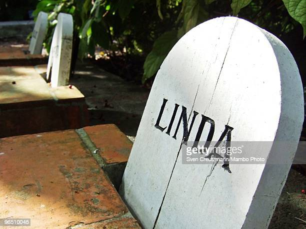The gravesite of Hemingway�s dog Linda next to Ernest Hemingway�s house at the Finca Vigia on January 6 2007 in Havana Cuba The Hemingway Finca Vigia...