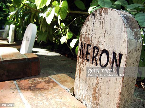 The gravesite of Hemingway�s dog Neron next to Ernest Hemingway�s house at the Finca Vigia on January 6 2007 in Havana Cuba The Hemingway Finca Vigia...