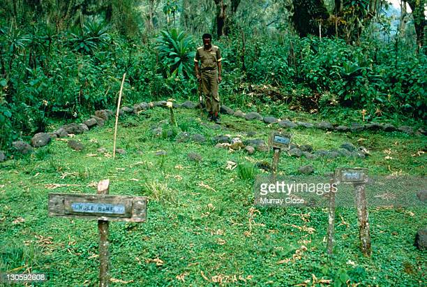 The graveyard where naturalist Dian Fossey and several of her beloved gorillas are buried at the Karisoke Mountain Gorilla Research Centre in Rwanda...