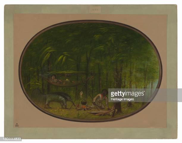 The Great Ant-Eater, 1854/1869. In the Amazon rainforest near Ucayali river. Artist George Catlin.