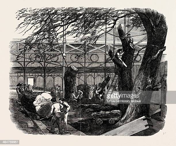 The Great Exhibition Building The Crystal Palace Hyde Park London UK Cutting Down Trees In The North Transept 1851 Engraving