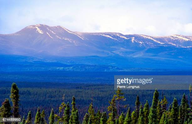 The great outdoors of the Yukon Territory, Canada