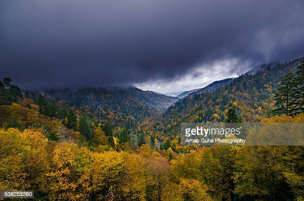 the great smoky mountain fall colors - newfound gap stock pictures, royalty-free photos & images