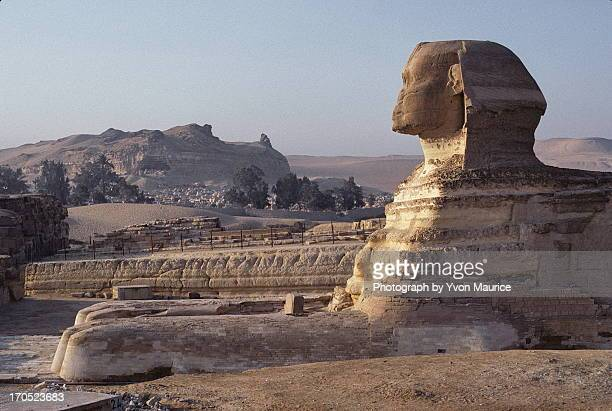 The Great Sphinx of Giza in profile