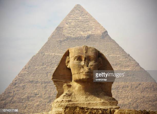 the great sphinx of giza - the sphinx stock pictures, royalty-free photos & images