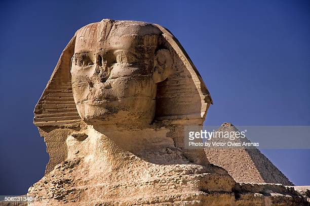 the great sphinx of giza - victor ovies fotografías e imágenes de stock