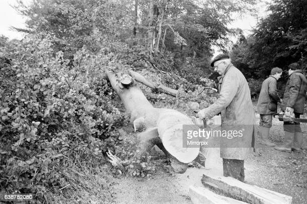 The Great Storm October 1987, storm damage Bradfield, Berkshire, England, 16th October 1987. The 1987 Great Storm occurred on the night of 15th and...