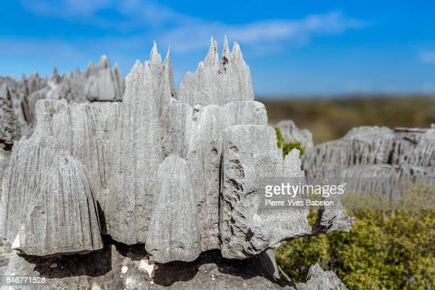 the great tsingy de bemaraha - pierre yves babelon stock pictures, royalty-free photos & images