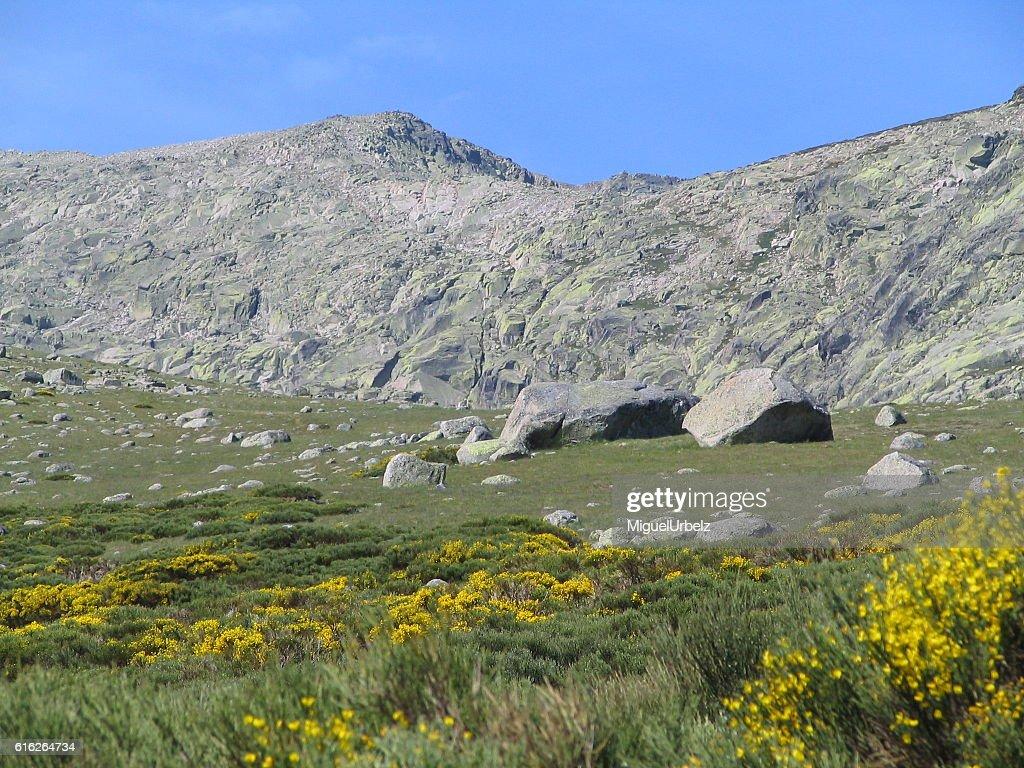 The Gredos walk : Stock Photo