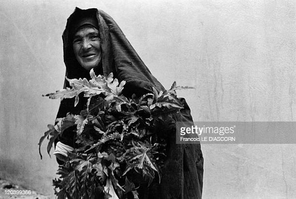 The Greek islands a vanishing world in Karpathos Greece on April 01 1980 Gathering leaves man from Olympos village island of Karpathos