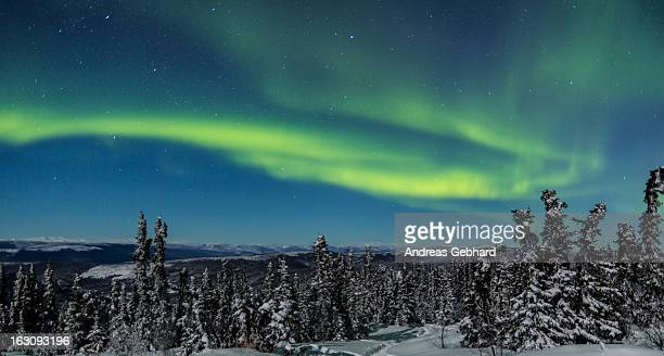 The green lights of an aurora borealis are visible on February 20 2013 near Cleary Summit just north of Fairbanks Alaska The Aurora forecast of the...