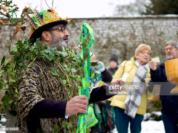 The Green Man at an orchardvisiting wassail at Sledmere House Yorkshire Wolds UK on 20th January 2018 Wassail is a traditional Pagan winter...