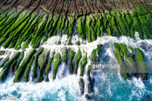 the green reef on a sunny day, taiwan, new taipei - taiwan stock photos and pictures