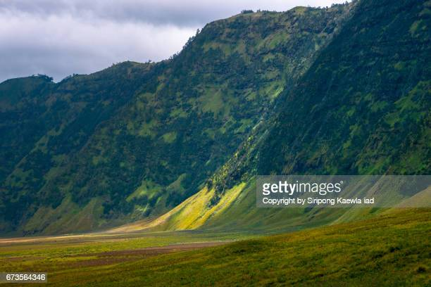 the green savannah meadow field behind the bromo volcano, east java, indonesia. - bromo crater stock photos and pictures