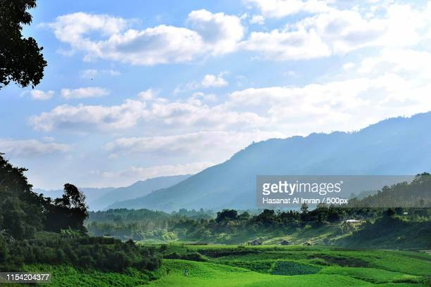 the green valley - bangladesh stock pictures, royalty-free photos & images