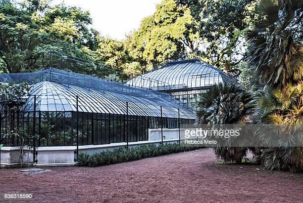the greenhouse at art nouveau style - palermo buenos aires stock photos and pictures