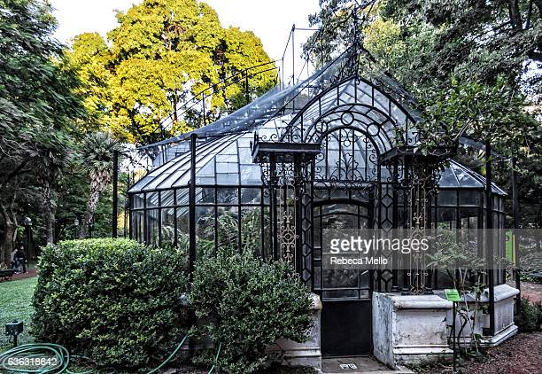 the greenhouse at art nouveau style - art nouveau stock pictures, royalty-free photos & images