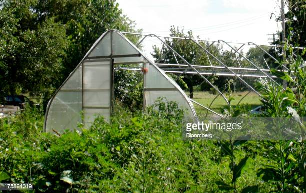The greenhouse of Greg Willerer owner of Brother Earth Farms in Detroit stands on an acre off Rosa Parks Boulevard in Detroit Michigan US on Thursday...