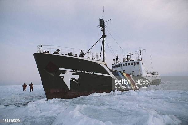 The Greenpeace vessel 'Rainbow Warrior' in the Gulf of St Lawrence, Canada, 1st March 1982.