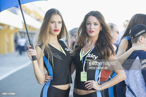 The grid girls pose in pit during the qualifying practice during the MotoGP of Valencia Qualifying at Ricardo Tormo Circuit on November 7 2015 in...