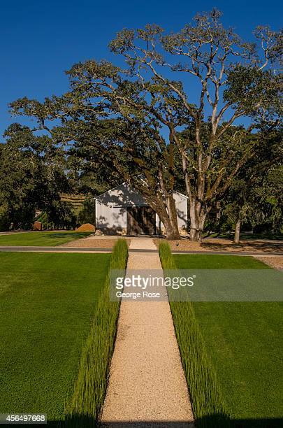 The grounds of Medlock Ames Estate Winery are viewed on September 3 near Healdsburg California Warm sunny skies in Sonoma County Wine Country have...