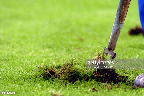 The groundsman forks the pitch