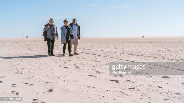 the group of senior friends walking on the beach - wantagh stock pictures, royalty-free photos & images