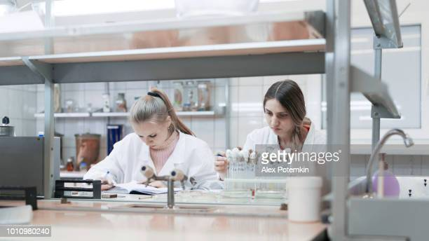 the group of women, college students, working together in the microbiology lab - alex potemkin or krakozawr stock pictures, royalty-free photos & images