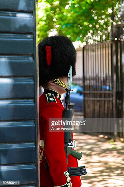 CONTENT] The guard sentry on duty near the Buckingham Palace London