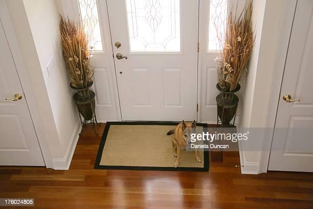 The guardian of the door