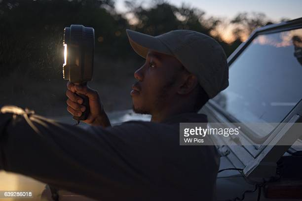 The guide is provided with a powerful flashlight with looking animals during the night safari Orient Express performs at Camp Khwai River Lodge by...
